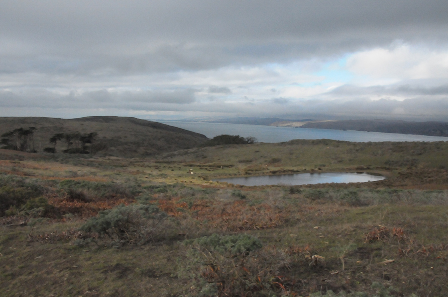 Lake and ocean at Tomales Point